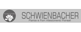 Schwienbacher